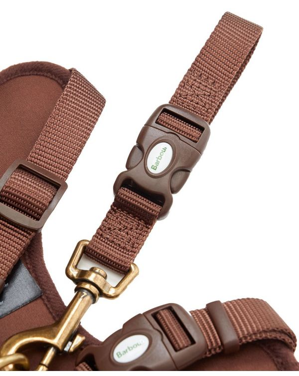Travel And Exercise Dog Harness