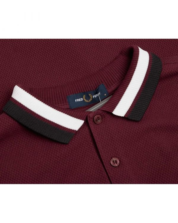 Bold Tipped Polo Shirt